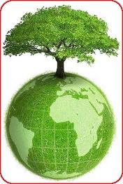 Способы помочь нашей планете