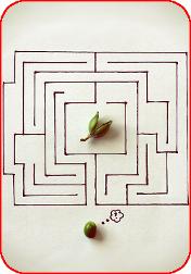 Краткая инструкция о том, как ставить цели и исполнять мечты.