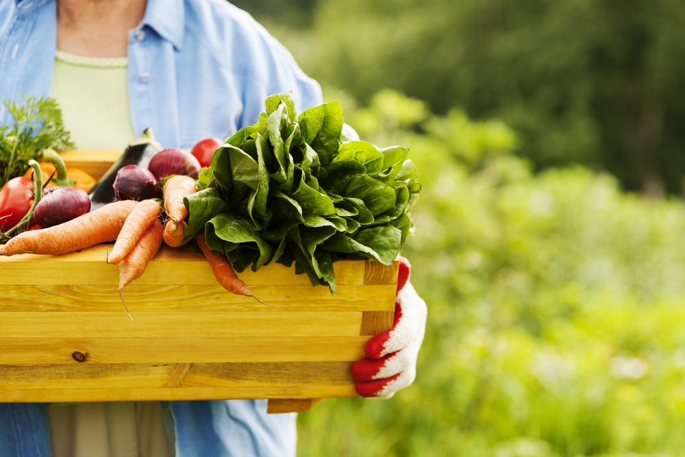 держит ящик с овощами, via shutterstock