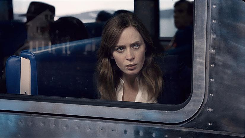 Девушка в поезде/