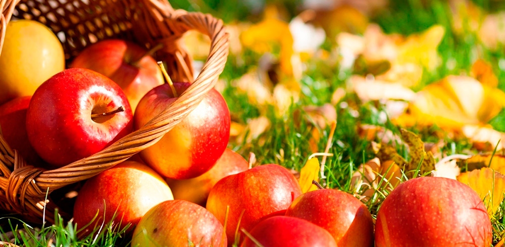 7 Главных Продуктов Осени Для Здоровья и Похудения