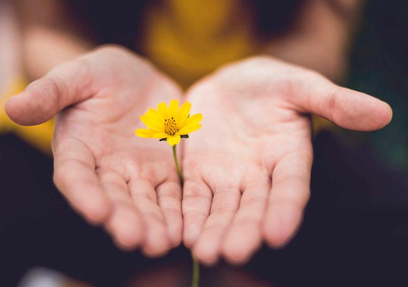 Нейробиологи объясняют, как благодарность меняет мозг, делая нас счастливее