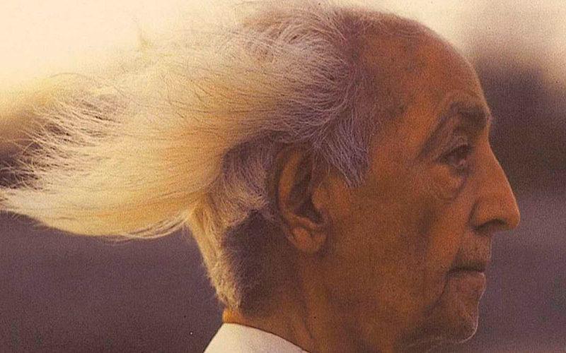 7 жестоких истин Кришнамурти, объясняющих, что именно не так с современным обществом